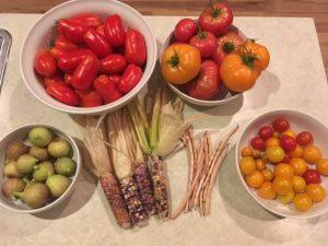 Thursday Harvest